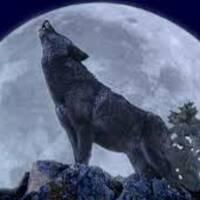 Alaskan Moon