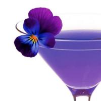 Legendary Martini